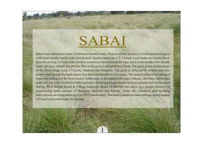 Sabai-02
